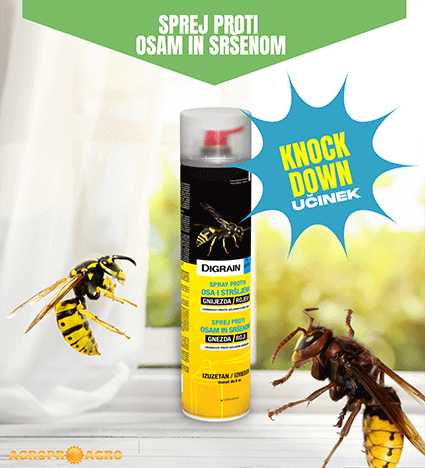 Insekticid digrain sprej proti osam in sršenom