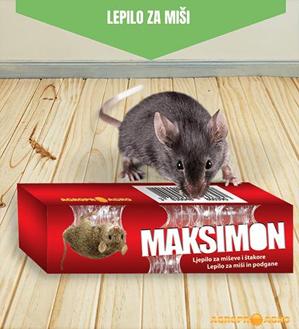 Maksimon deratizacijsko lepilo za miši in podgane